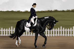 Stoffel dressage grand prix ENTRY by RvS-RiverineStables
