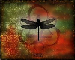 Coheed and Cambria by CrowHavenWitch