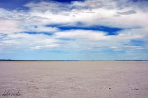 Salt Flats by cheslah