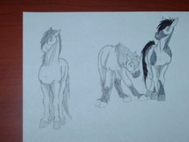 Three horses by Rikku123