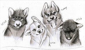 Crue wolves by Isnabel