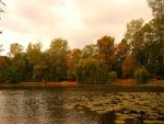 Polish gold autumn. by HeretyczkaA
