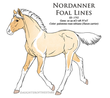 1752 - Nordanner Foal Design by Ikiuni