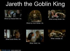 Jareth What I Think I Do Meme by Panda-Cat