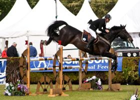 Jumping stock 36 by Kennelwood-Stock