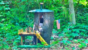 The Fairy Condo by sioranth