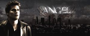 Angel never fades by Maxx86