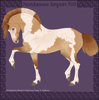 2012 Import Nordanner 510 - DovieCaba-Stables by DovieCaba