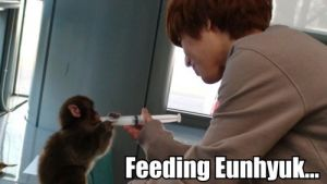 Generous much Taemin... by MissRainbows1997