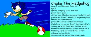 Cheka's Profile by BladerGirl101