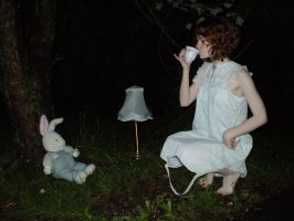 Woodland Tea Party 3 by Sitara-LeotaStock
