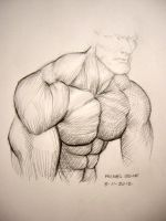 study of a male shoulder by myconius