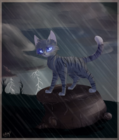 Watching the Storm by Bluefire-kitteh