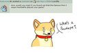 Answer 29 by Ask-Hus-x-Shibe