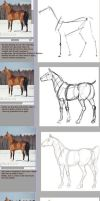 Tutorial: how to draw a horse with ref by Esa82