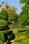 Levens Hall 128 by Forestina-Fotos