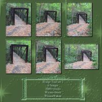Bridge trail set2 wicasa-stock by Wicasa-stock
