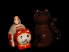 cutest salt and pepper shakers by mysteriousfantasy