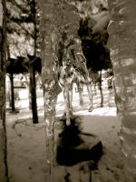 From The Perspective of an Icicle by Liberty-Moonbeam