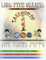 Liga Taekwon-Do FITE Galicia 2013 Wallpaper by Castivaz