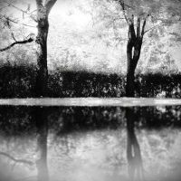 Nightmares by the River by anaPhenix