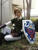 Link Cosplay Preview by EmilyScissorhands