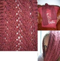 Scarf for Swap by cyla-knits