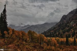 Stormy Skys of the Fork by mjohanson