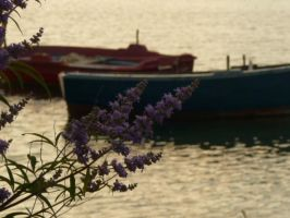 Sea of Puglia by volantchat