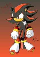 Shadow the hedgehog by Rapid-the-Hedgehog