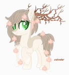  MLP  Closed Adopt by TuncHawk