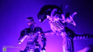 Revoltech 131 Snake Metal Gear Solid VS ALIENS by Digger318
