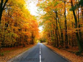 Colors of Autumn II by Maryl0u