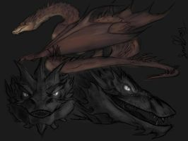 Smaug Sketches by EndoFire