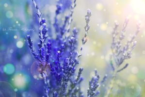 Tenderness by Floreina-Photography