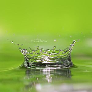 Water Drops 41 by ovidiupop