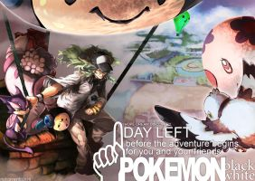 PKMN: Countdown to BW