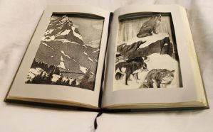 White Fang Book Alteration by wetcanvas
