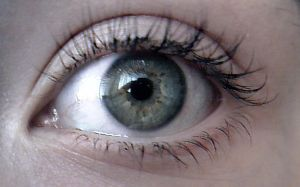 eye stock image by victoria2367