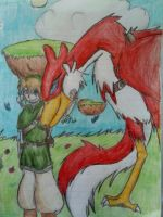 Link and His Crimson Loftwing by tyler-gf123