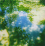 pond surface 1 by wordsalad