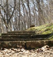 Stone Steps by canis7