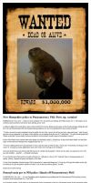 Punxsutawney Phil Wanted for Fraud by nagromelyahs