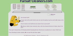 Web Design: Fursuit Cleaners by Catwoman69y2k