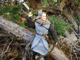 Haldir of Lorien 3 by Cin320