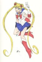 Gift Sailor Moon by Chaosbandit