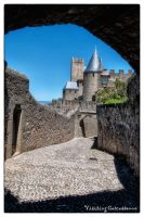 Carcassone 5 by calimer00