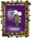 Freelancer Frame Picture by starsweb
