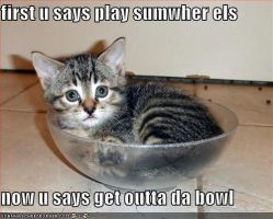 da bowl kitty by Ratchetblaster101