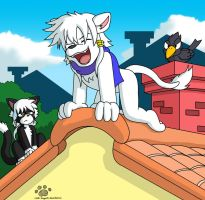 White Lion on the house by Coshi-Dragonite